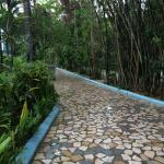 Pathway to my room