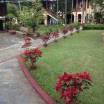 Photo de Pho Hoi Riverside Resort