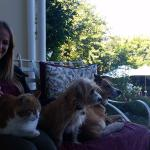 on the veranda with the animals.