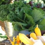 Fresh flowers for you room and organic produce for your. breakfast