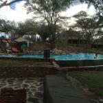 Photo de Serengeti Serena Safari Lodge