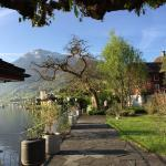 Photo de Seehotel Rigi-Royal