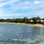 Island from jetty