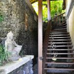 Bidadari Private Villas & Retreat - Ubud照片