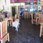 "Restaurant & bar, with one of the ""house dogs"" (all very friendly)"