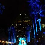 Loved the lit up palm trees at night.
