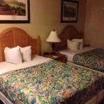 Фотография Days Inn Tampa/North of Busch Gardens