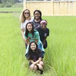 Pit stop in the rice fields