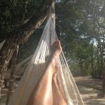 The Hammock view