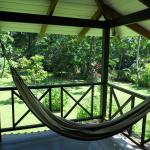 Hammock outside of the room