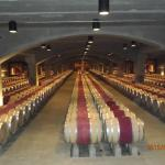 Wine Storage at Basement