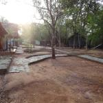 Jungle Lodges Bannerghatta Nature Camp照片
