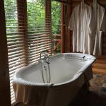 The Fernery Lodge & Chalets Foto