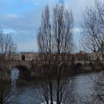 Photo of Archibald At the Charles Bridge
