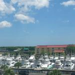 Overlooking the marina