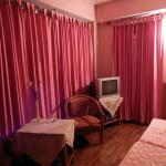 Kanchenjunga room(pink room) pic 2