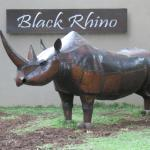 Foto van Black Rhino Game Lodge