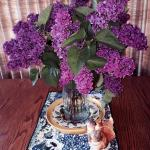 Lilacs in bloom on the breakfast table