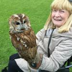 One happy birthday girl and hopefully a happy tawney owl