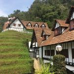 The Lakehouse, Cameron Highlands Foto