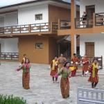 Traditional dance organised for a group of tourists