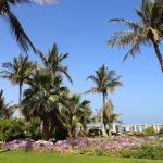 Foto di Hilton Al Hamra Beach & Golf Resort