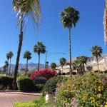 Photo of BEST WESTERN PLUS Las Brisas Hotel