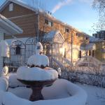 Our fish pond covered with snow becomes a Dairy Queen treat to the eyes each winter!