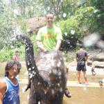 So much fun even the elephants were enjoying themselves! Come April-May and celebrate Thai new y