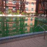 An ecotel hotel , so greenery reflects in the pool too!