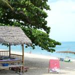 Photo of Samui Beach Resort