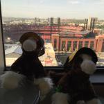 The view from room on 17th floor.  (The kids made some Clydesdales into Pirate fans).