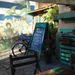 Unplugged Hostel Pocitos의 사진