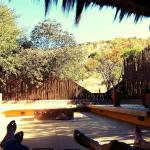 Foto de Ivory Tree Game Lodge