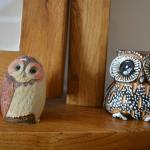 Some of the owls