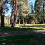 Foto de Cold Springs Resort and RV Park