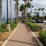 Walking area to the boat dock.