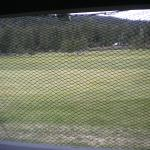Golf course view from room 223