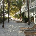 Foto di Parrot Key Hotel and Resort