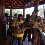 Places nearby - Giraffe Center