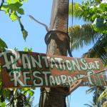 Plantation Surf Inn照片