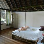 Photo of Cotococha Amazon Lodge