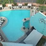 View of the pool from room 838.
