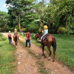 horse riding tour with kids