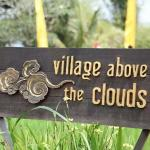 Village Above the Cloudsの写真
