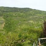 Foto de Alta Perugia Bed & Breakfast