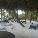 Tipp: Lions Dive & Beach Resort