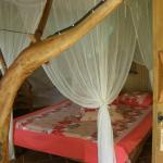 Foto de Vanira Lodge