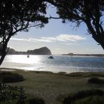 Foto de Mangawhai Heads Holiday Park
