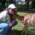The writer with Delilah the Nyala